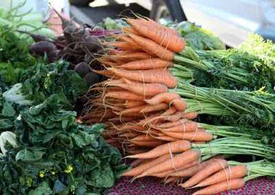Farmers market near Electric Street Auburn CA