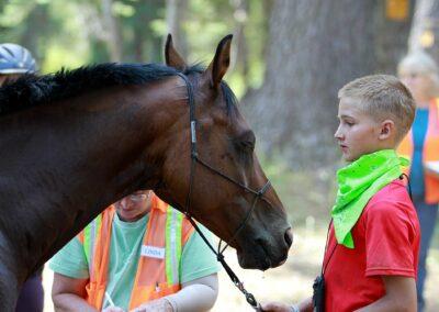 Auburn CA horse trails near Electric Street